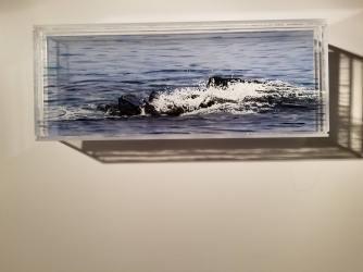 """Breakwater, #1, 5x13"""""""